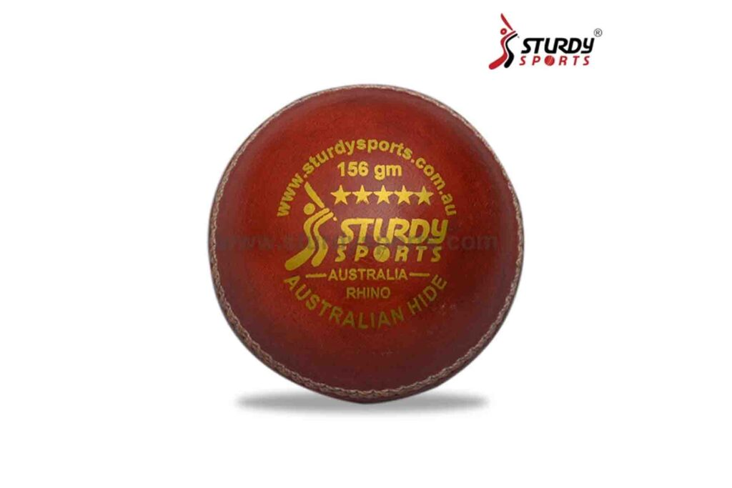 Cricket Ball Buying Guide