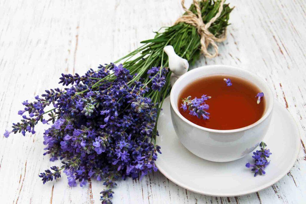 4 Benefits of Lavender Tea